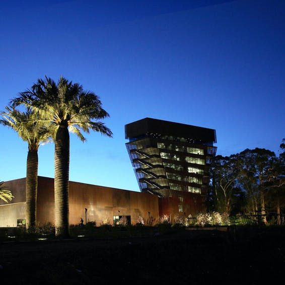 Photo of The De Young Museum