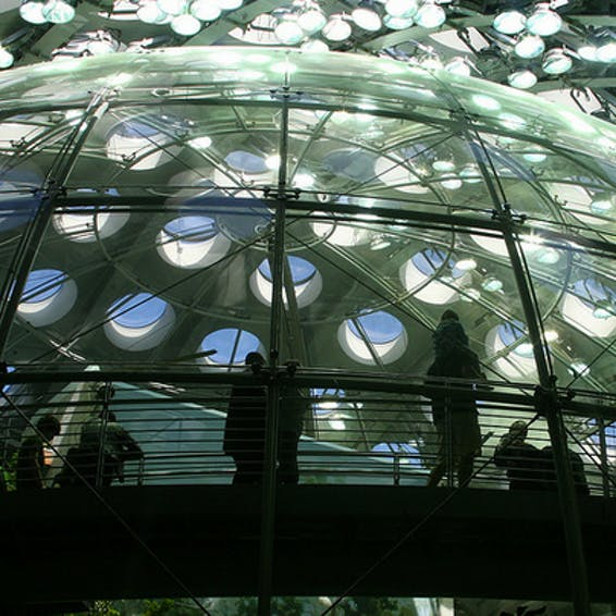 Photo of California Academy of Sciences