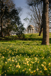 Photo of Royal Botanic Gardens, Kew