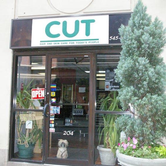 Photo of Cut Hair Salon