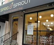 Photo of Sprig and Sprout