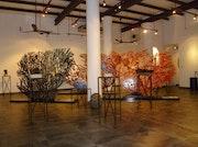 Photo of Galeria Contempo