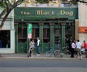 Photo of Black Dog Free House