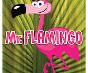 Photo of Mr. Flamingo
