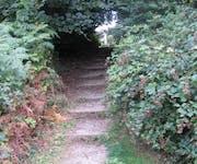 Photo of Hampstead Heath