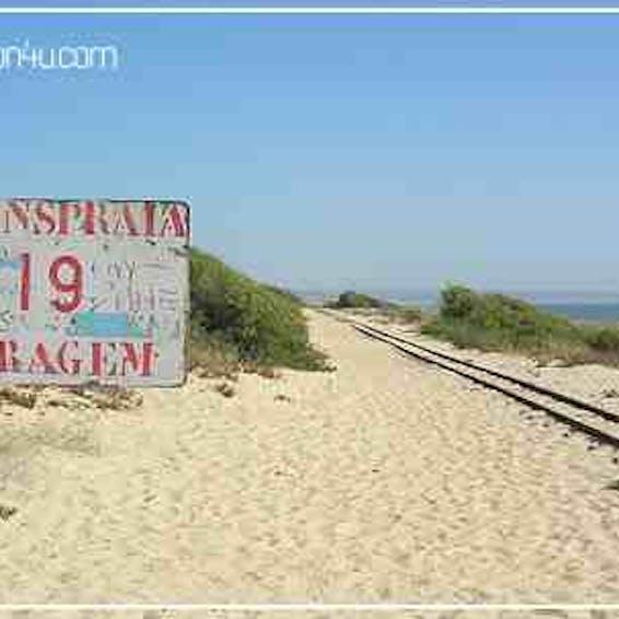 Photo of Beach 19/Stop 19
