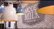 Photo of Model Milk